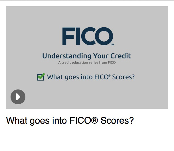 What Goes Into FICO<sup>®</sup> Scores FICO Scores